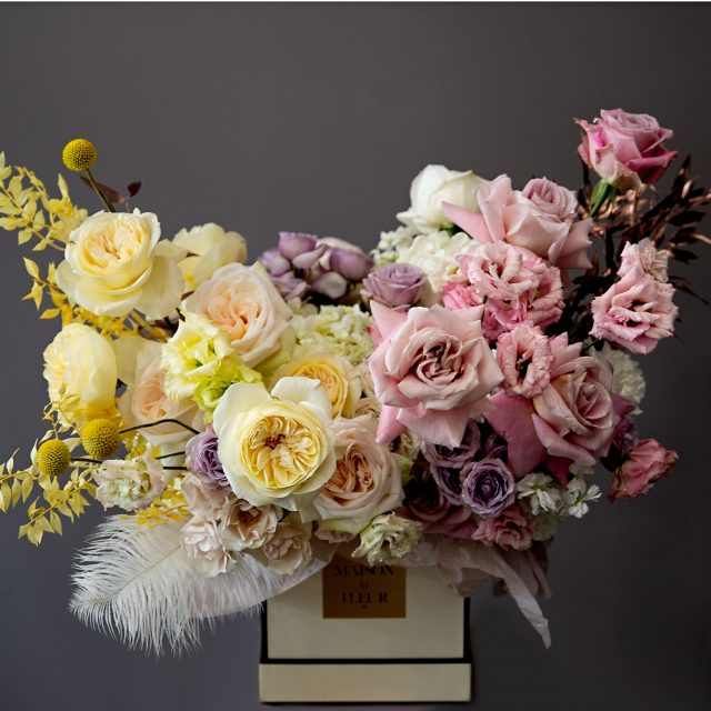 Smile of the sun - Mixed pastel yellow and purple garden roses